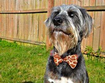 Giraffe Print Bow Tie for Dog Collar