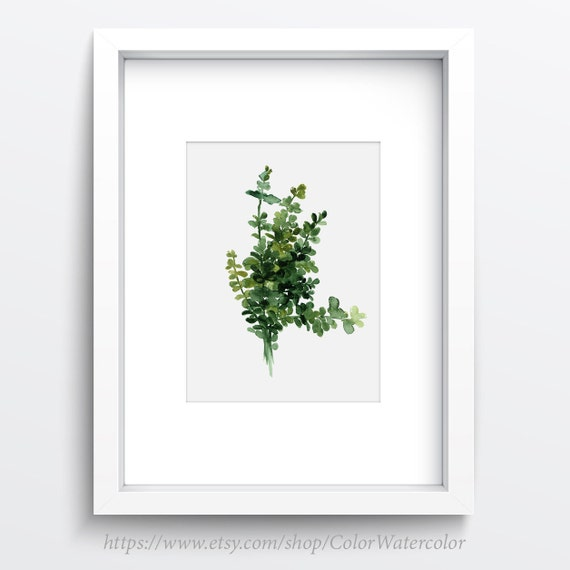 Thyme Wall Decor Herbs Art Print Watercolor By ColorWatercolor