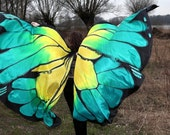 Made to order belly dance hand painted silk Isis wings - butterfly. Unique handmade wings in your colors  - multicolored, ombre, pattern.