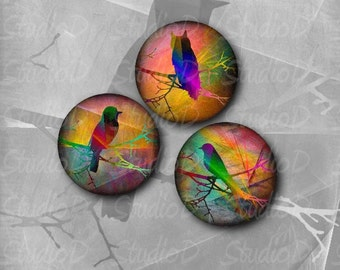 Bird on a branch, digital collage sheet, round images, 1 inch circle, key chain, bottle caps, scrapbooking, jewelry making