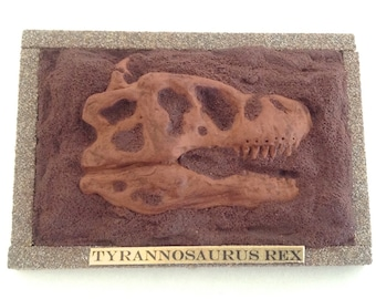 Mini T-Rex skull Desk Fossil with plaque -  handmade in clay