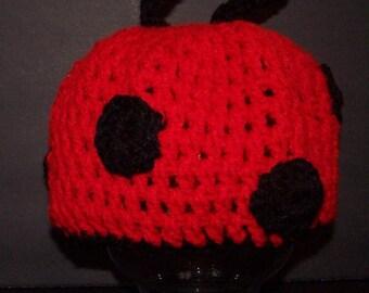 Little Lady Bug Hat