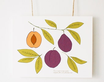 "Botanical Plum Illustration, Fine Art Print, ""The Shape of a Plum"", Vintage Inspired Art, Wall Art, Fruit Drawing, Plum Design"