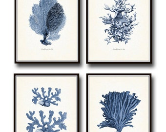 Vintage Indigo Blue Sea Coral Print Set No. 2, Giclee Art Print, Beach House Art, Coastal Art, Prints and Posters, Coral Print, Illustration