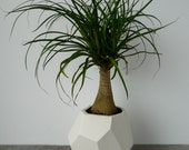 Geo-Planter, Geometric Faceted Planter, Ceramic, Modern Porcelain Crystal Design