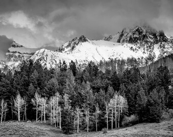 Mountains Rugged Black and White Snowy Spring Forest Aspens Colorado Rustic Cabin Lodge Photograph