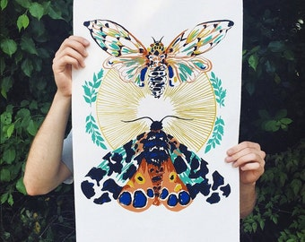 Nature Illustration, Cicada Moth Butterfly Green Yellow Orange Pink Black Insect Bug Original Screen Print Serigraphy