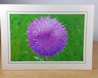 Greeting Card  Flower