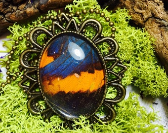 The indian real butterfly pendant