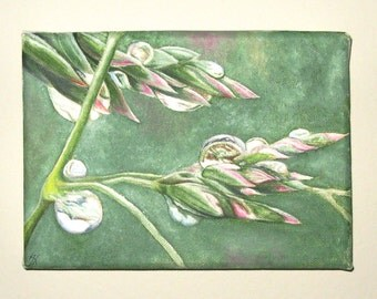 Small Painting of Water Drops on Grass