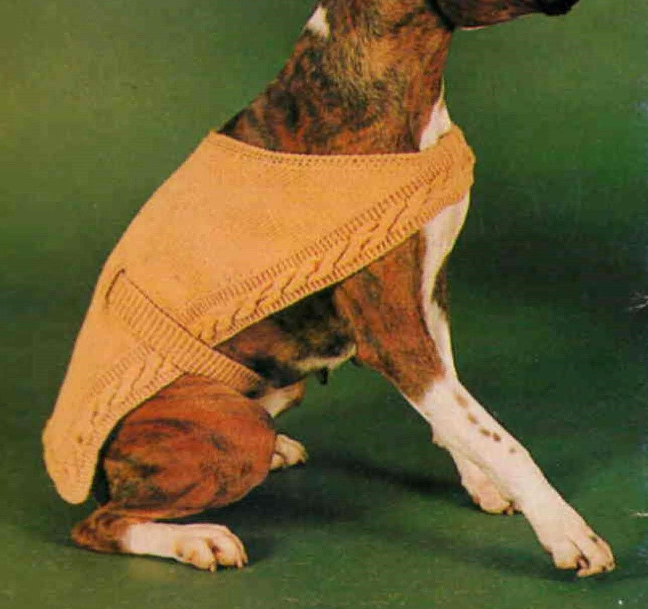 Knitting Patterns For Boxer Dogs : Knitted Dog Coat ... PDF Knitting Pattern ... To fit an