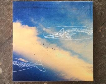 Floating Whale bones