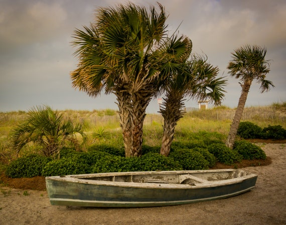 palm trees boat-#14