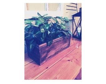 Tabletop Planter Box
