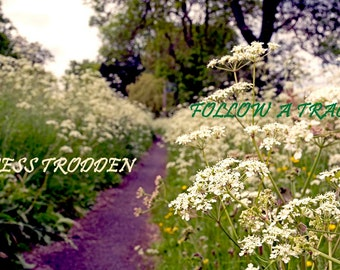 Follow A Track Less Trodden adventure quote on photo A3 giclee print text photograph inspirational quote home living room decor typography