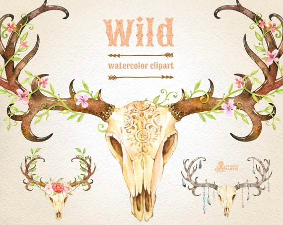 Wild. 3 Watercolor skulls with antlers hand painted clipart