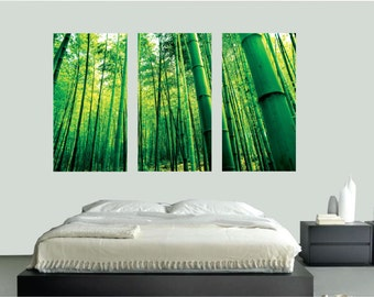 Bamboo Wall Mural Decal, Bamboo Wall Stickers, Bamboo Wall Art Designs,  Removable Bamboo