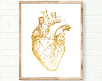 Human heart | Etsy