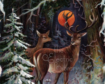 Deer Under the December Moon Digital Download: Christmas Night in the Forest
