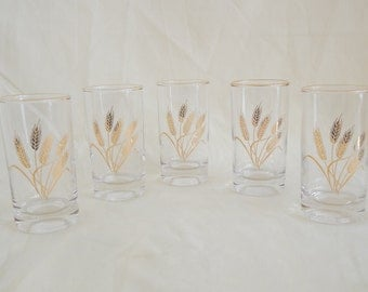 Vintage Wheat Glasses with Gold Trim - Set of Five