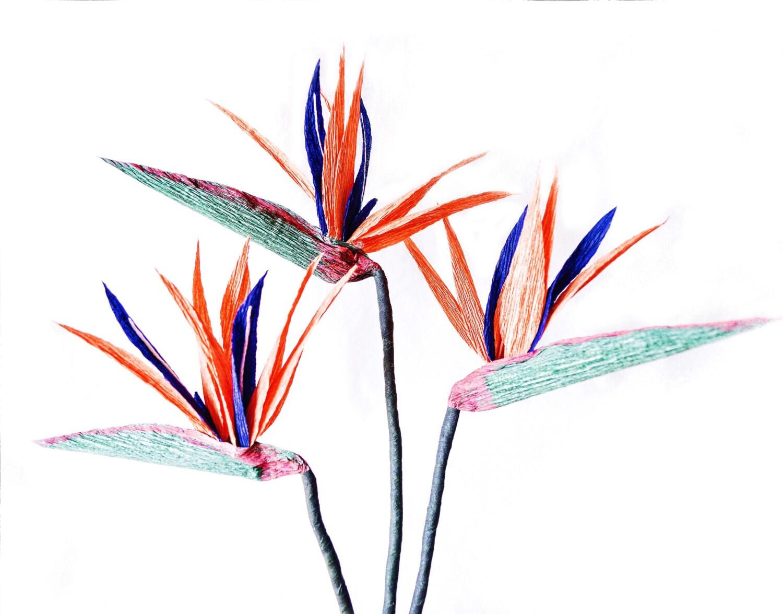 papier oiseau de paradis fleur en papier cr pon d co t. Black Bedroom Furniture Sets. Home Design Ideas