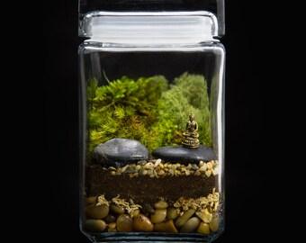 Zen Terrarium-Buddha Terrarium -Zen Garden-Moss Terrarium-TerraSphere
