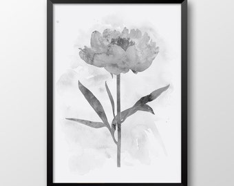 Peony Print, Printable art, Watercolor print, Wal decor, Black and white print, Flower print, Poster 156