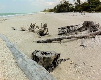 Beach Photography-Washed Ashore