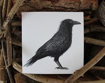 Crow card - Hand drawn card