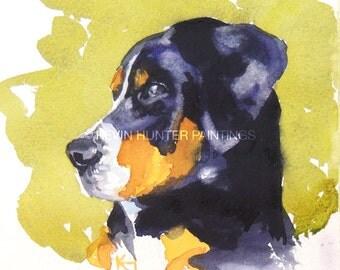 Ms. Poppideaux; a dog portrait in watercolor