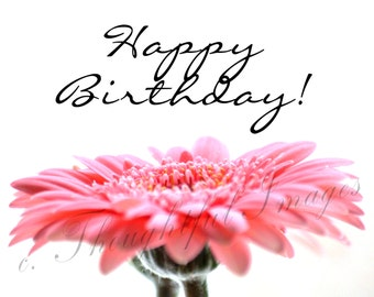 Pink Flower Happy Birthday Folding Greeting Card