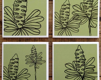 Set of 4 Drink Coasters - Banksia Line Drawing