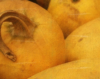 Photography Autumn Squash, Yellow Vegetable, Textures, Big pumpkins, autumn Season, Vegetable Market, Fine Art Print, Vintage photo