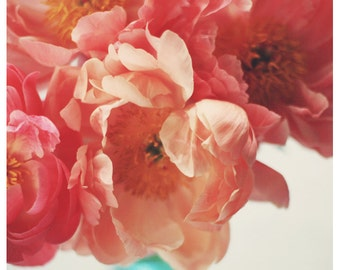 Flower Art - Nature Photograph - Peony Photograph - Flower Photograph - Paeonia 5 - Gift For Her - Alicia Bock - Floral Art - Pink Print
