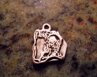 Solid Fine Silver YOUR PETS face pendant