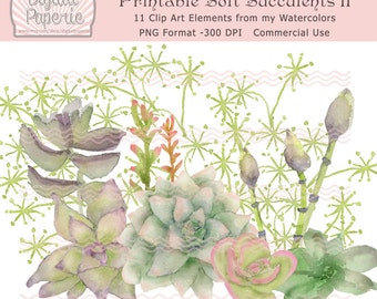 Printable Soft Watercolor Succulents Group 2 Clip Art Card Making Invites Scrapbooking Commercial Use  PNG 300 DPI