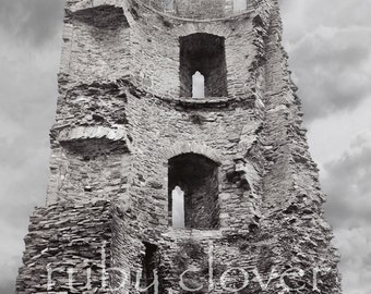 IRISH CASTLE, Ferns Castle, Co. Wexford, IRELAND, Medieval Decor, Stone Tower Photo, Black and White Castle, Gift for Dad, King's Castle