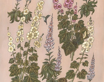 Hollyhocks and Foxgloves - Print
