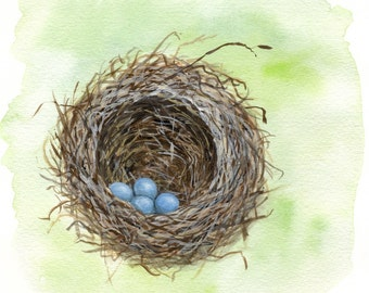 Robin's Nest - Signed Print of an original watercolor painting