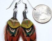 Small Earthy Pheasant Feather Earrings- Ready to Ship