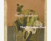 Super Sale Circus Dogs Terrier  Monkey vintage photo  Electronic Digital Scan 1890's-1920's Carl Hagenbeck and Great Wallace Shows 53i