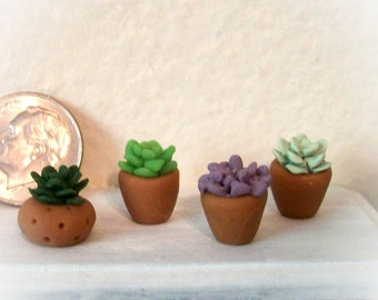 One wee Succulent in a Terra Cotta Pot Dollhouse Scale One-of-a-Kind Tiny Miniature Hand Sculpted Home or Garden Plants Your Choice