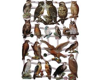 Germany Paper Scraps Die Cut Birds Of Prey Owls Hawks  7333