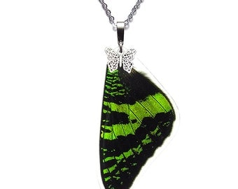 Real Butterfly Wing Necklace (Sunset Moth Forewing - N003)