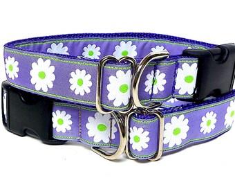 "1"" Lavender Purple DAISIES Dog Tag Collar"