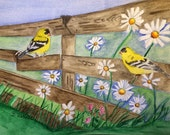 "Daisy Field, an original 9"" x 12"" water color painting, featuring two yellow goldfinches perched on a broken fence in a daisy field."