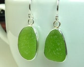 Lime Green Sea Glass Earrings- Ready to Ship