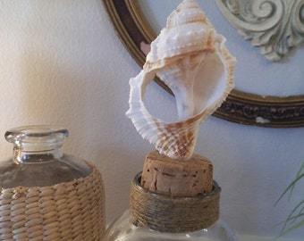 upcycled Seashell and cork Topped Cloche ~ Glass dome ~ Beach Cottage display