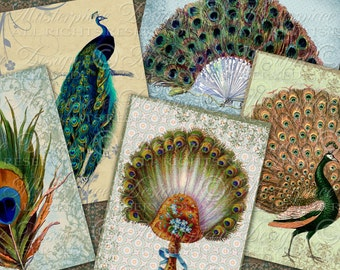 Peacocks and Feathers Tag Designs - Printable Hang Tags, Gift Tags, Price Tags, Labels, Jewelry Cards - Download and Print Digital Sheet