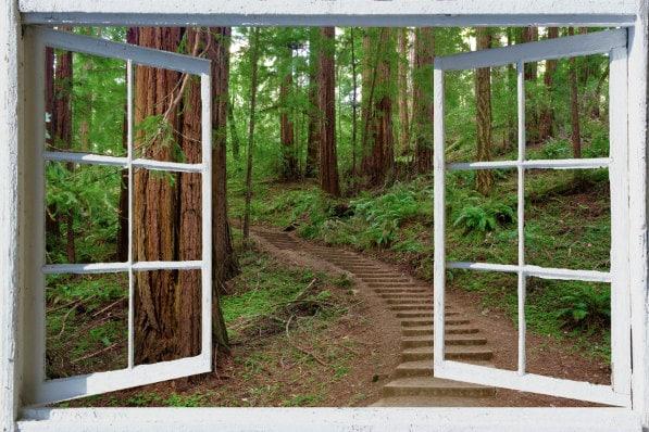 wall mural window self adhesive forest window view 3 sizes shop houzz magic murals llc emerald lake wallpaper wall